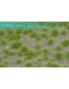 (717-21) Short tufts spring