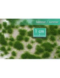 (717-22) Short tufts summer
