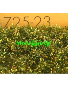 (725-23) Weed tufts early fall