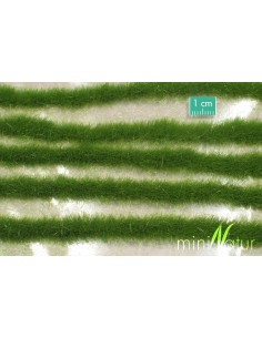 (728-22) Long grass strips...