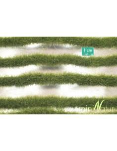 (728-23) Long grass strips...