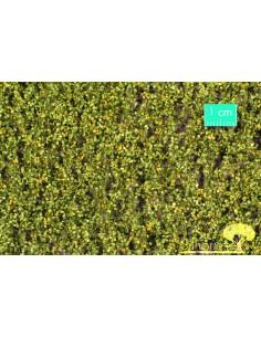 (910-23) Birch foliage...