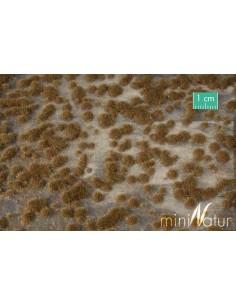 (747-24) Moss pads