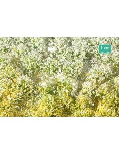 (726-31) Prato fiorito
