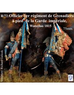 Officier 1er régiment de...