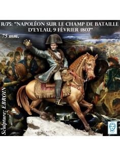 Napoléon sur le champ de...